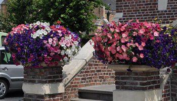 _0001_bloempotten en bloembakken